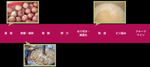 フルーツワイン製造工程(醸し仕込み)